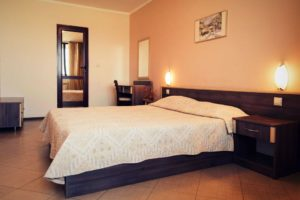 Double room with a large bed at SPS Hotel, Plovdiv